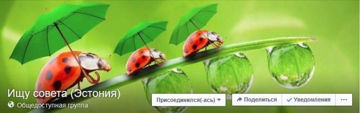post-17272-0-61728600-1453800445_thumb.jpg